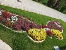 Giardino in fiore-13